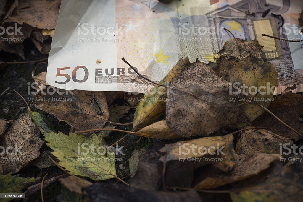 50 Euro Note royalty-free stock photo