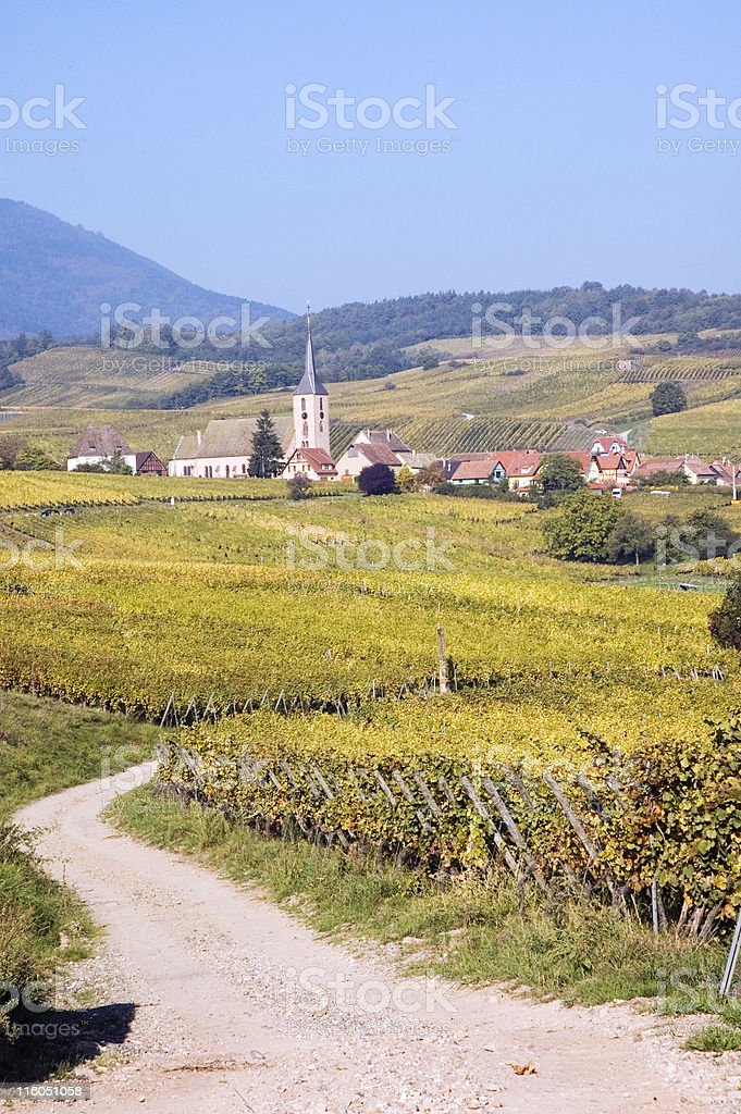 Europe, France - Route du Vin royalty-free stock photo