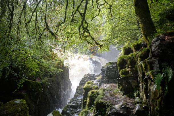 Europa, United Kindom, Highland, paisaje cerca de Pitlochry - foto de stock