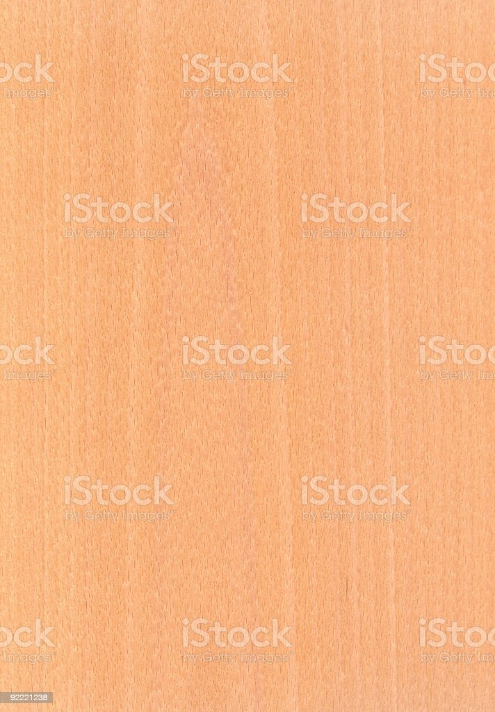 European Beech - Wood Texture Series royalty-free stock photo