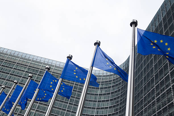 European flags in front of the Berlaymont building in Brussels European Union flags in front of the Berlaymont building in Brussels, Belgium berlaymont stock pictures, royalty-free photos & images