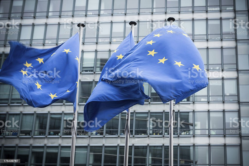 European flags. stock photo