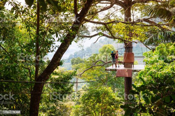 European tourists on zip line elevated platform over tropical forest picture id1034228068?b=1&k=6&m=1034228068&s=612x612&h=slwllneqrlthx0jjij aj4b6vgyxkglyh2k06ni 84g=