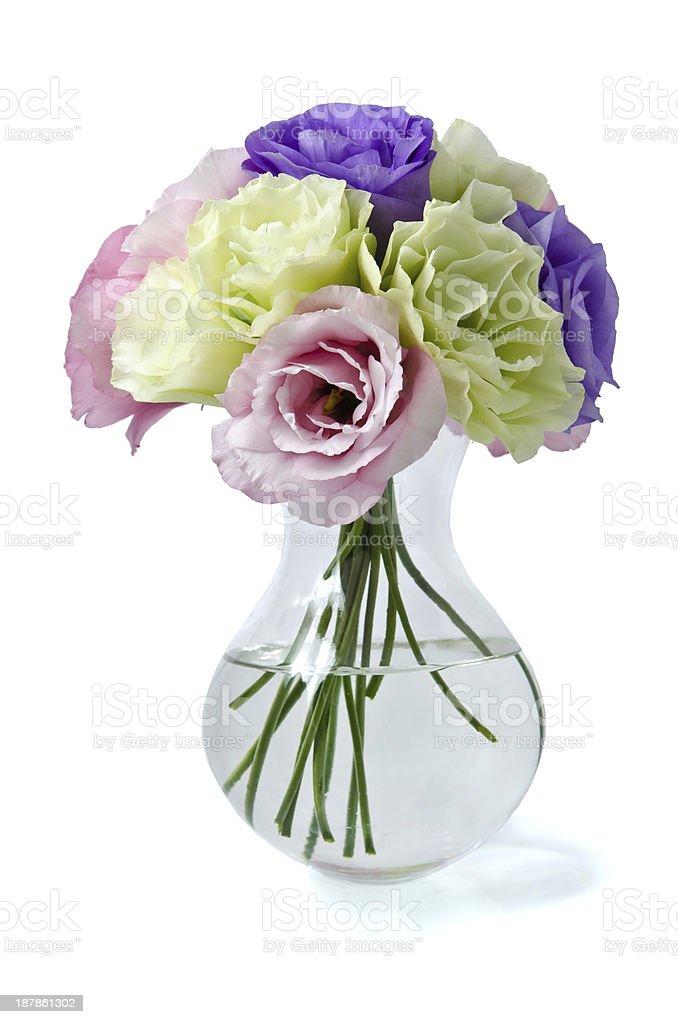 Eustoma flowers royalty-free stock photo