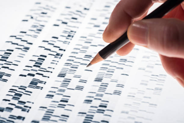 Auswertung von DNA-Gel stock photo