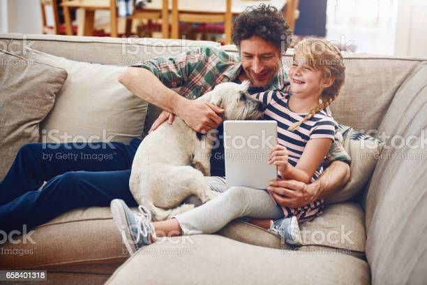 Even the dog wants in on whats happening online picture id658401318?b=1&k=6&m=658401318&s=612x612&h=hokjpvbgtms6essyxkrtxxulu2zzyxs4qckzt2rq5jw=