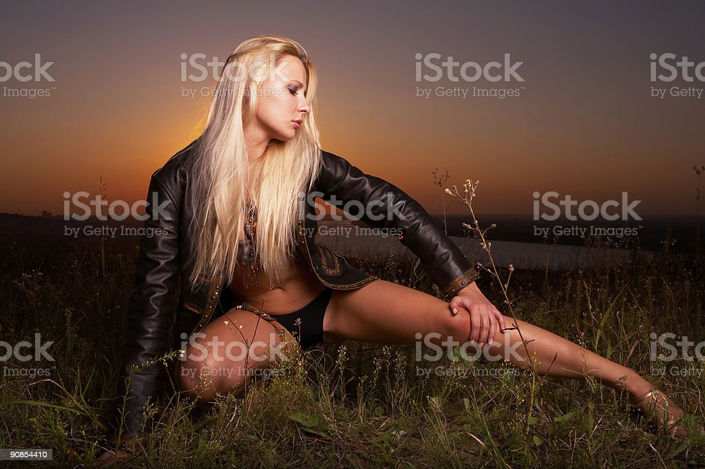 Evening fantasy royalty-free stock photo