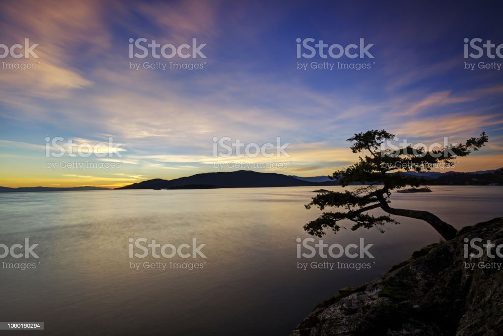 evening glow at Juniper Point, Lighthouse Park, West Vancouver, BC,...