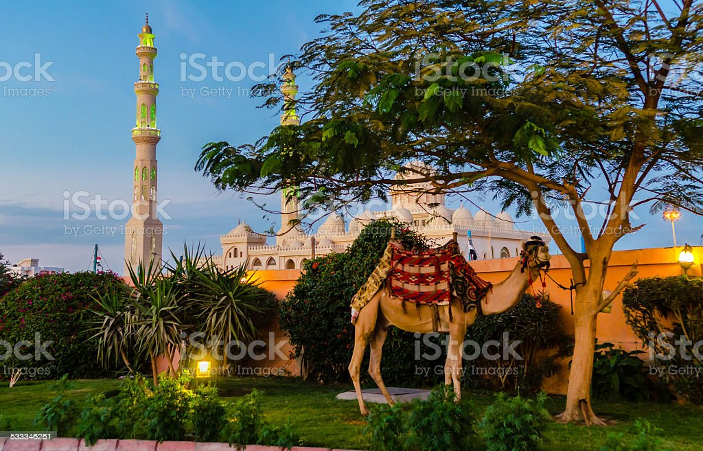 Evening in Hurghada. Egypt stock photo
