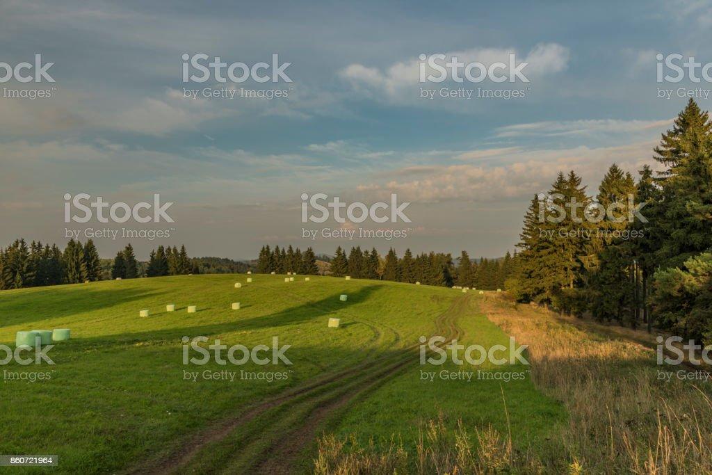 Evening in Slavkovsky les national park stock photo