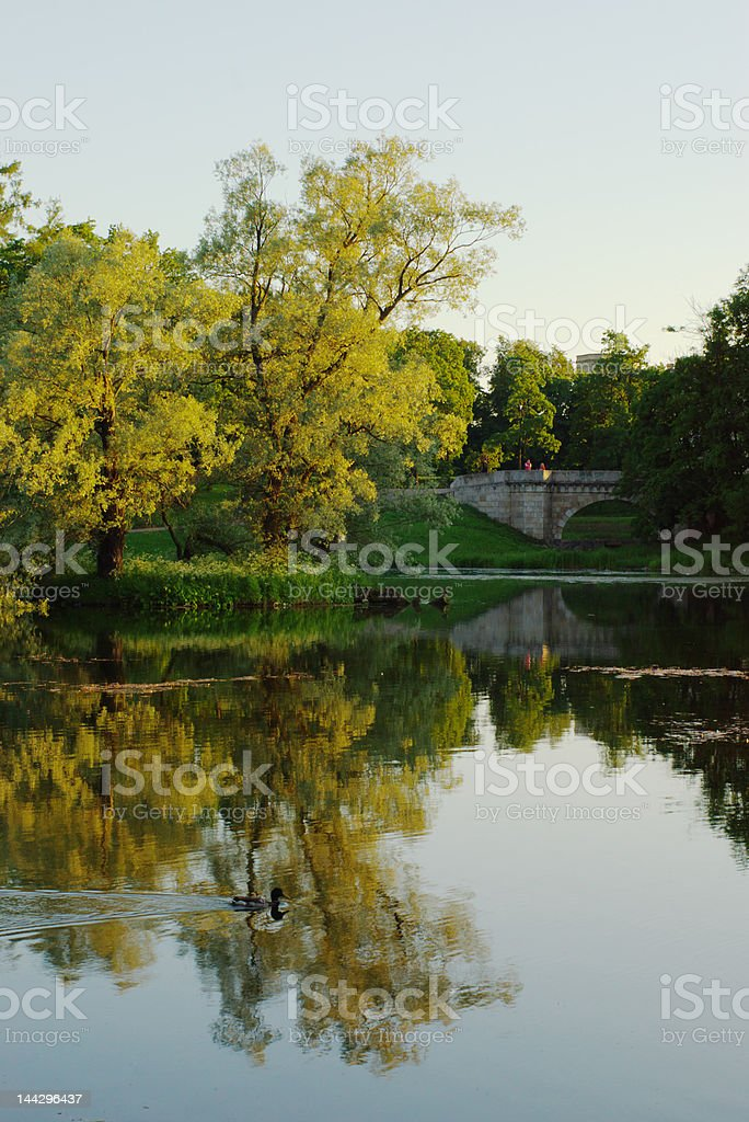 evening in the park royalty-free stock photo