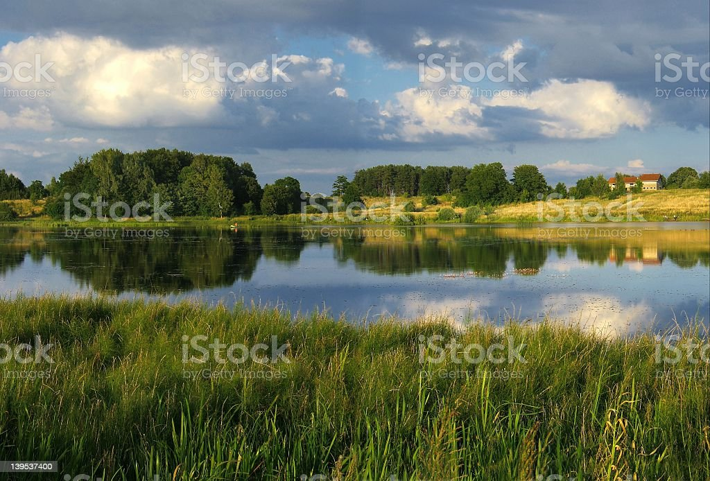 A evening lake with grass in front and forests behind  stock photo