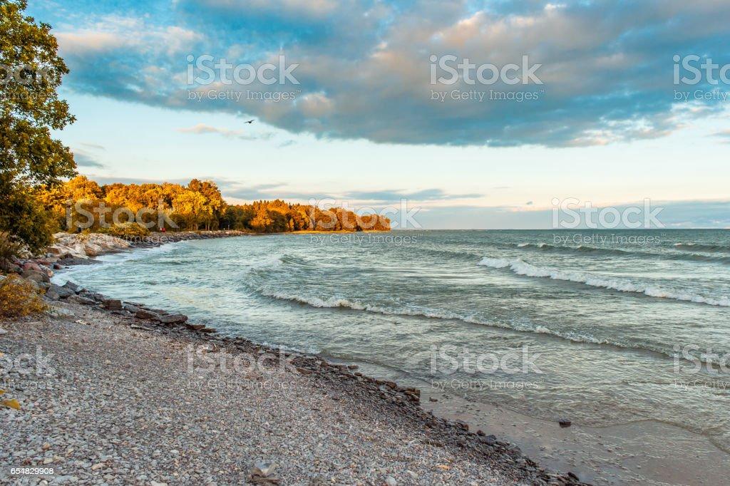 Evening Lakeshore stock photo