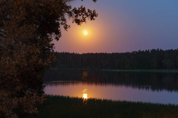 Evening landscape of moon rise over calm lake stock photo