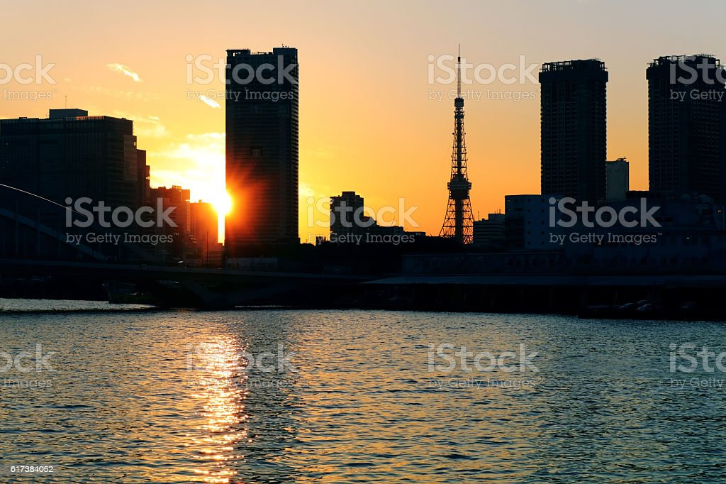 Evening landscape with Tokyo Tower stock photo