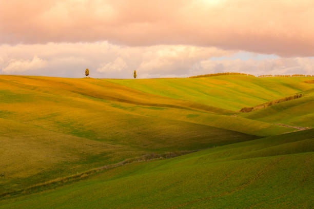 Evening landscape with Tuscany hills stock photo