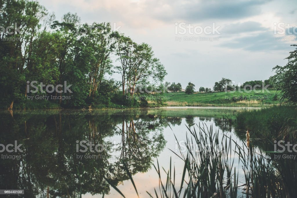 Evening light by the water zbiór zdjęć royalty-free