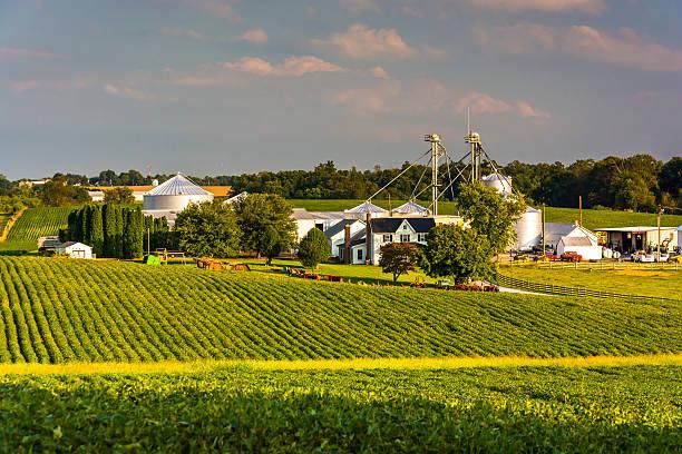 Evening light on farm fields in Howard County, Maryland. stock photo