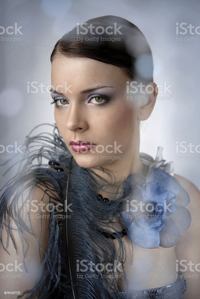 evening make-up for beautiful girl royalty-free stock photo