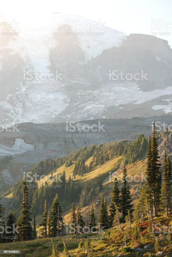 Evening on Mount Rainier royalty-free stock photo