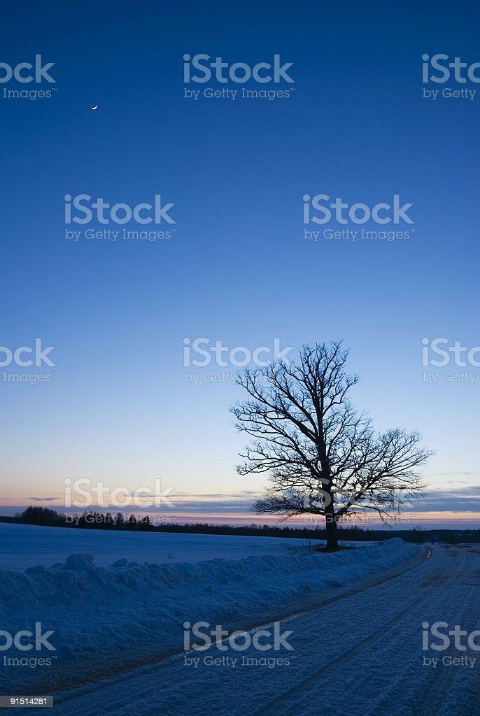 Evening royalty-free stock photo