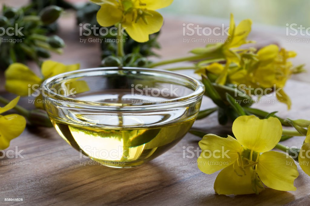 Evening primrose oil in a glass bowl stock photo