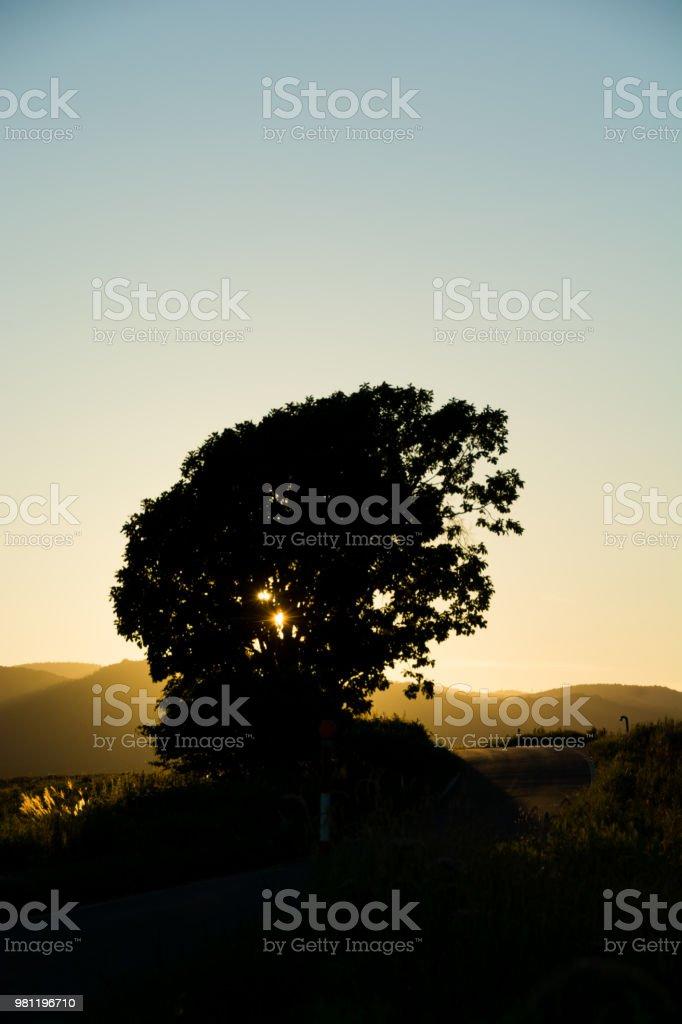Evening sky in Biei stock photo