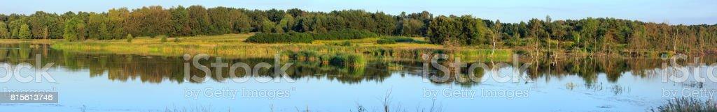Evening summer lake panorama. stock photo