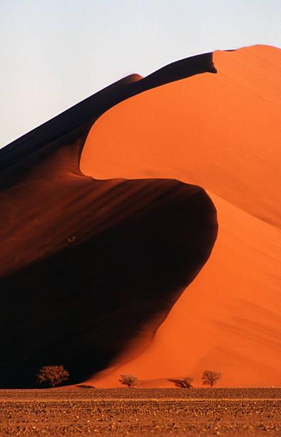 abend sonnenlicht, namib - namib wüste stock-fotos und bilder