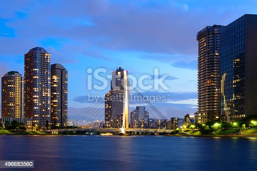 istock Evening View of Office Buildings and Highrise Mansion in Tokyo 496683560