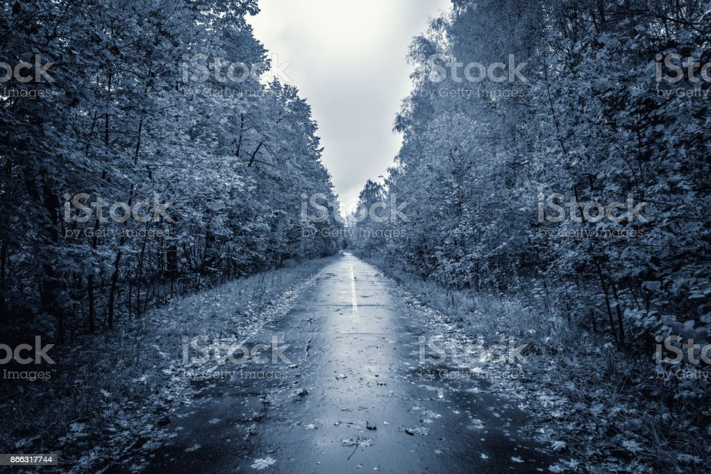 Evening view of the road. stock photo
