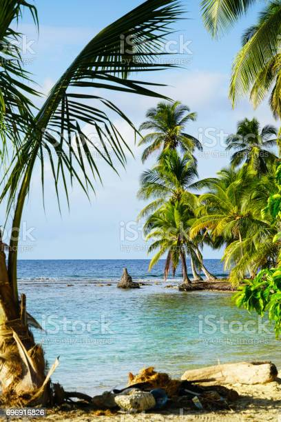 Eveniong view with palm trees framing beach on san blas island in picture id696916826?b=1&k=6&m=696916826&s=612x612&h=zgylxmzefzyomeenir30yk qe534mvazvdgvss u5cq=
