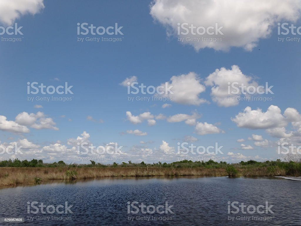 Everglades, Florida stock photo