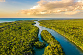 Landscape with an aerial view of wetlands in Everglades National Park at sunset, Florida, USA