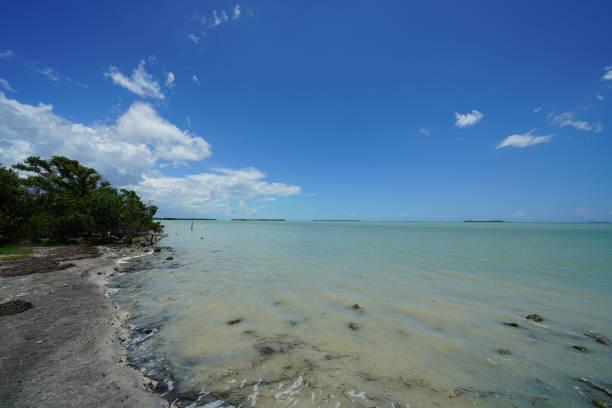 Everglades National Park - Coastal Area stock photo