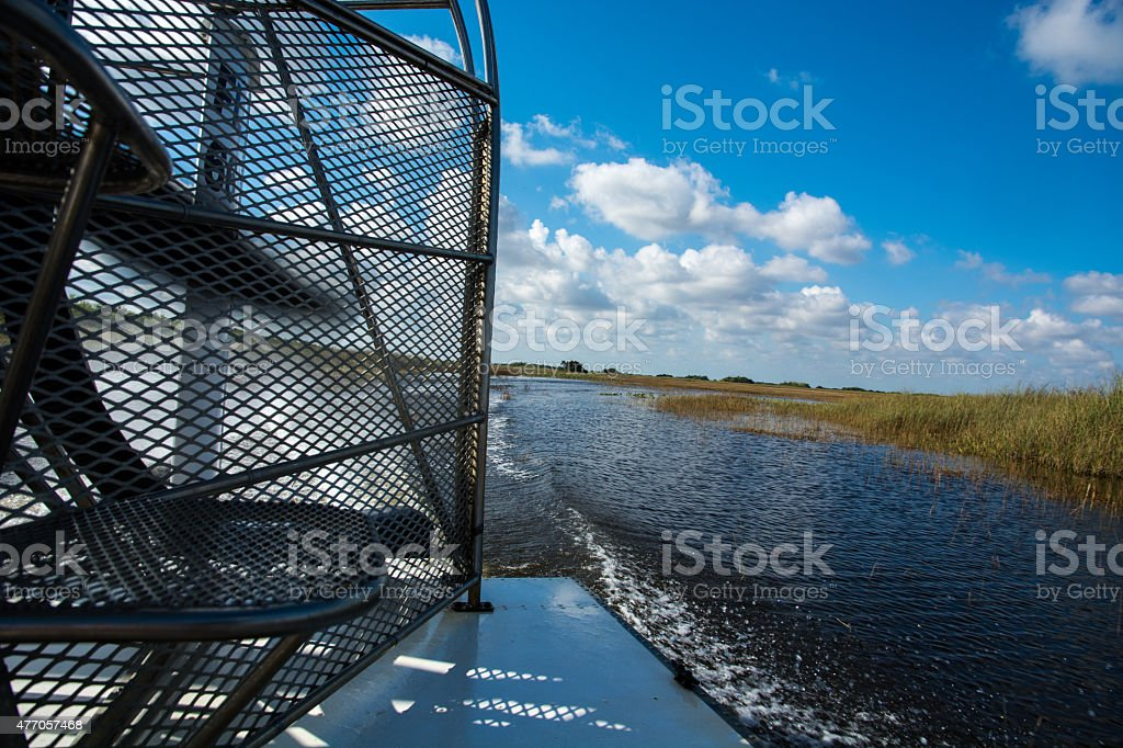 Everglades stock photo