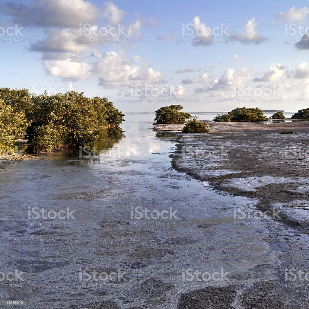 Everglades Water Empties into Florida Bay royalty-free stock photo