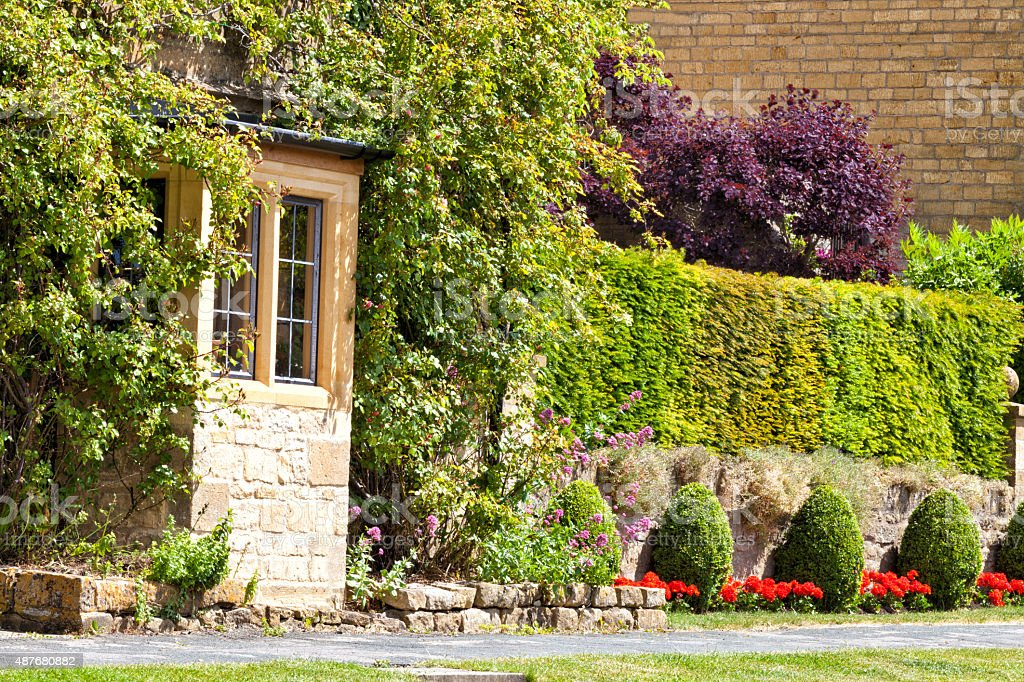 Garden trimmed evergreen hedge on a stone wall and cottage flowers