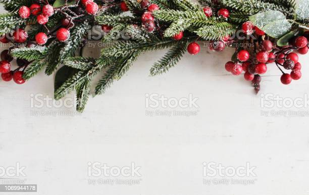 Photo of Evergreen Branches and Berries