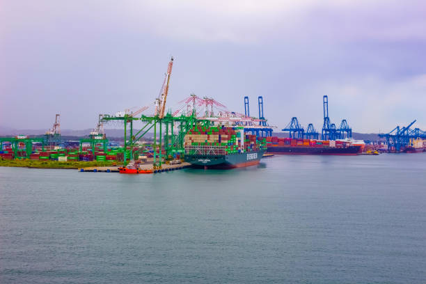 Immergrünes Containerschiff mit voller Ladung im Hafen angedockt – Foto