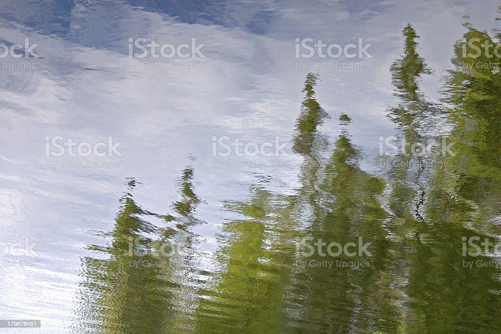 Evergreen Reflection royalty-free stock photo