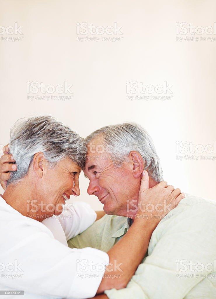 Evergreen romance royalty-free stock photo