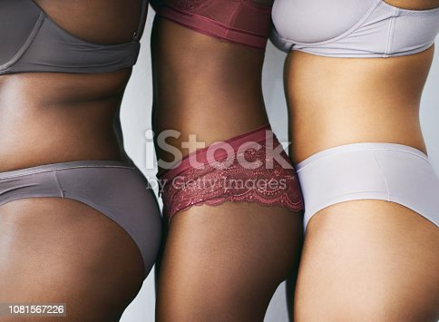 Cropped studio shot of a group of beautiful young women posing together in their underwear
