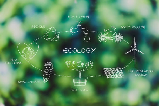everyday ecology actions diagram stock photo