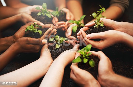 Cropped shot of a group of people holding plants growing out of soil