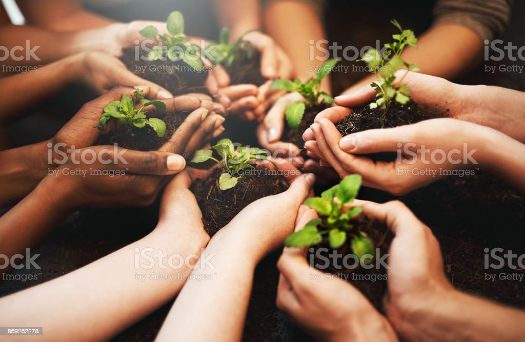 Everyday should be Earth Day stock photo