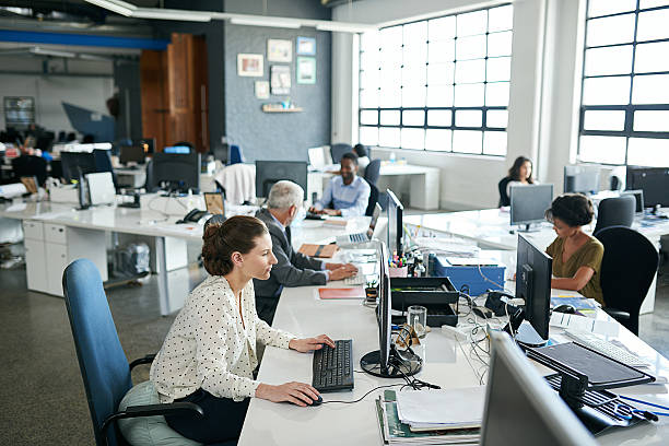 everyone's one hundred percent focused in this office! - white collar worker stock photos and pictures