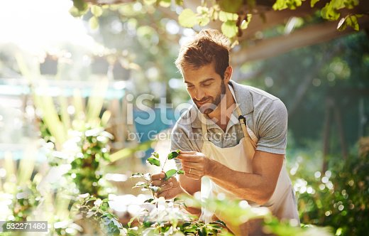 istock Everything grows with love 532271460