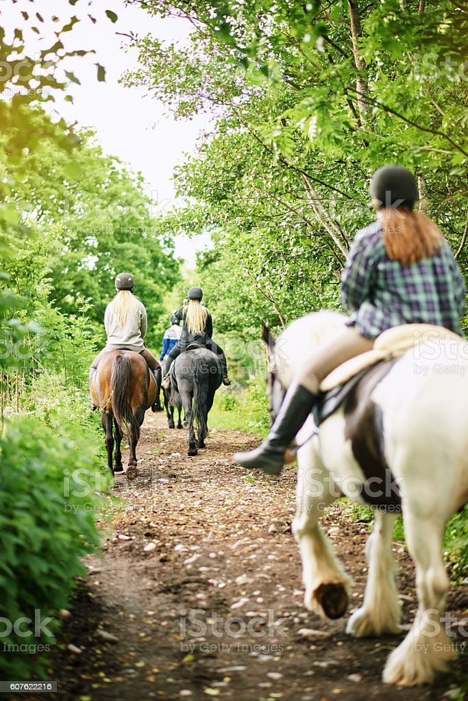 Everything looks more beautiful when you're on horseback stock photo