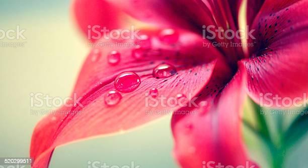 Everything needs water picture id520299511?b=1&k=6&m=520299511&s=612x612&h=uqom1kvdlbxbvhesr5bvvac4hxhcj969ywqga3g6uj4=
